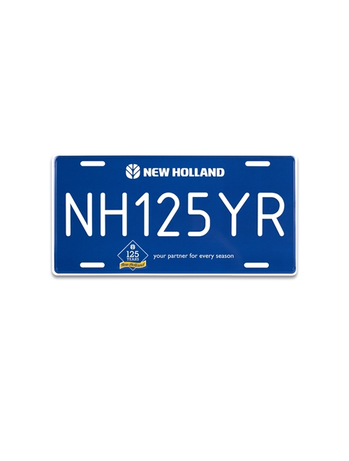 Picture of NH 125 License Plate